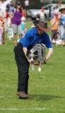 richard curtis and pogo performing in the k9 freestyle dancing dogs display