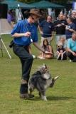 Pogo a member of the dancing dog display team